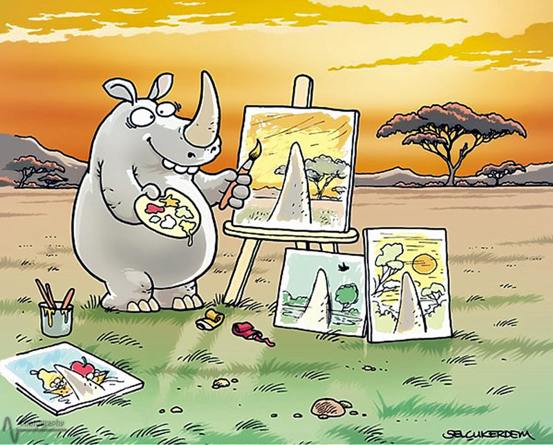Vision from a rhinoceros